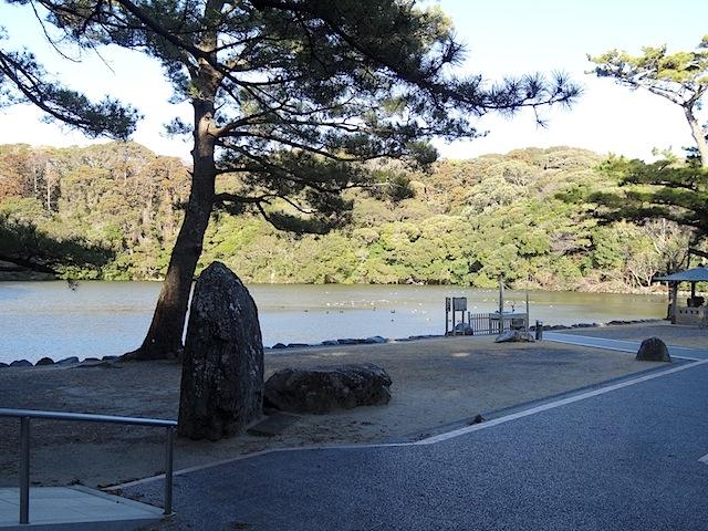 0224桜ヶ池5