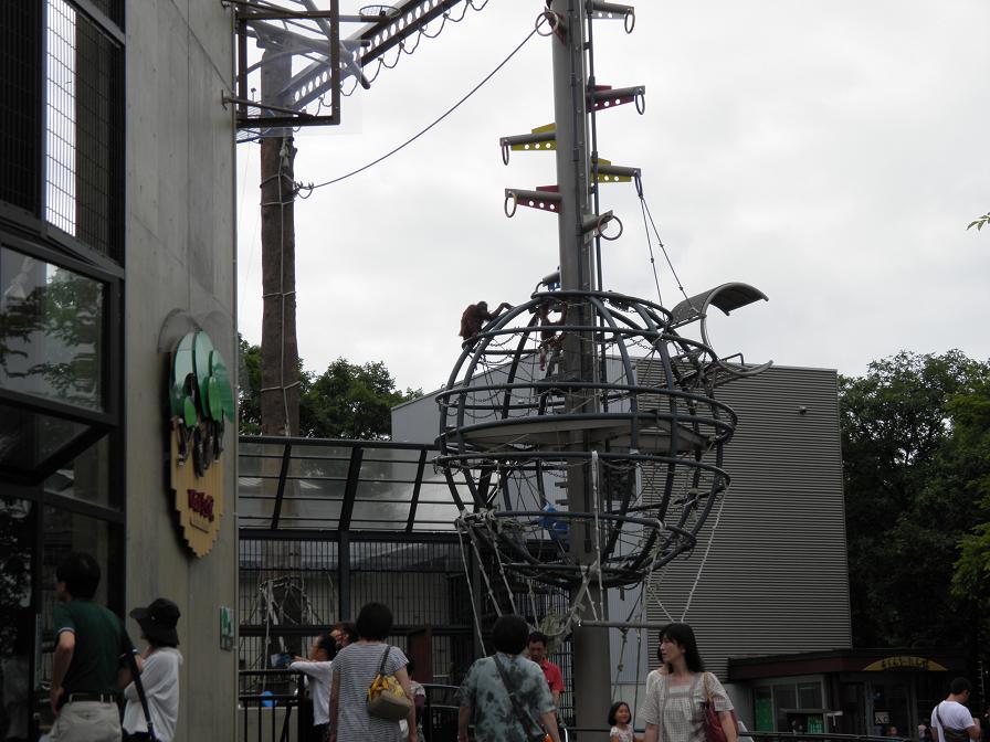 asahiyama7.jpg