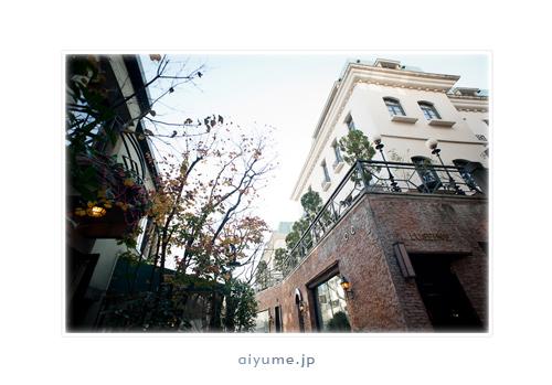 jardin001.jpg