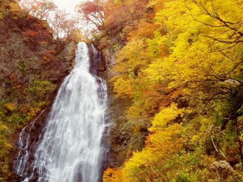 くろくまの滝(秋)