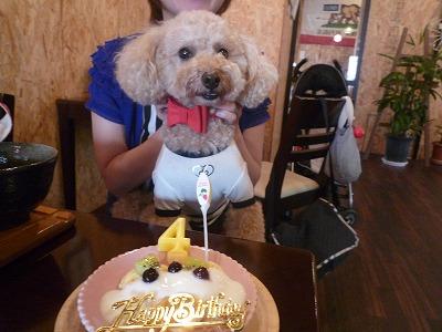 小太朗くん/Birthday Boy
