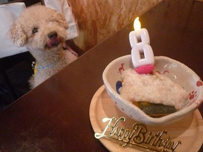 りるクン/BirthdayBoy2