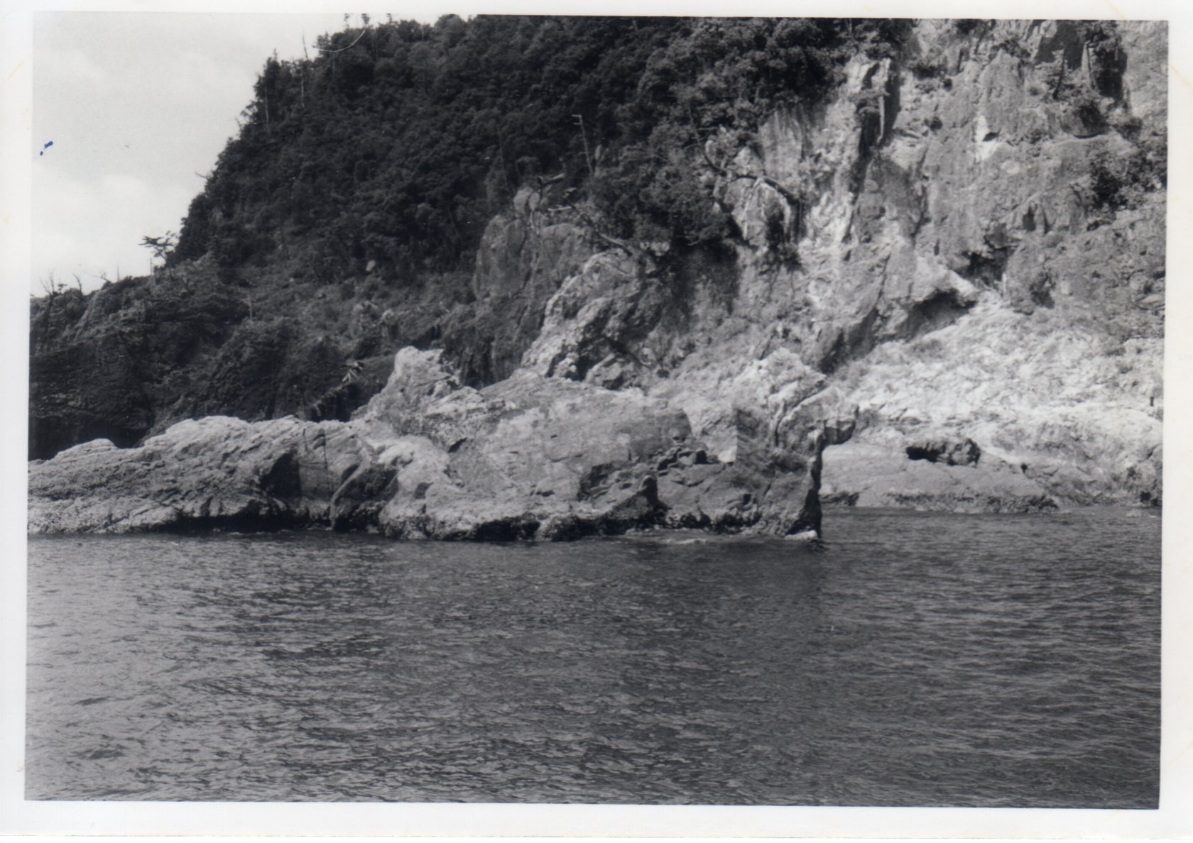 南紀・勝浦④ラクダ岩(1967年)409