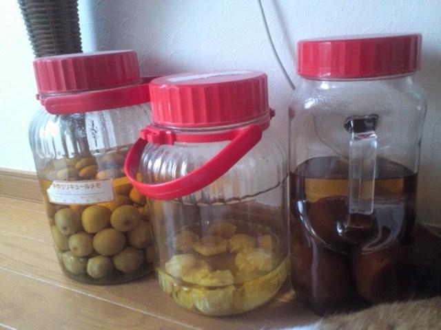 手作り果実酒