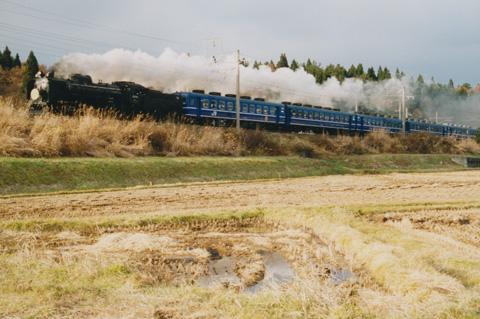 d51-akita004