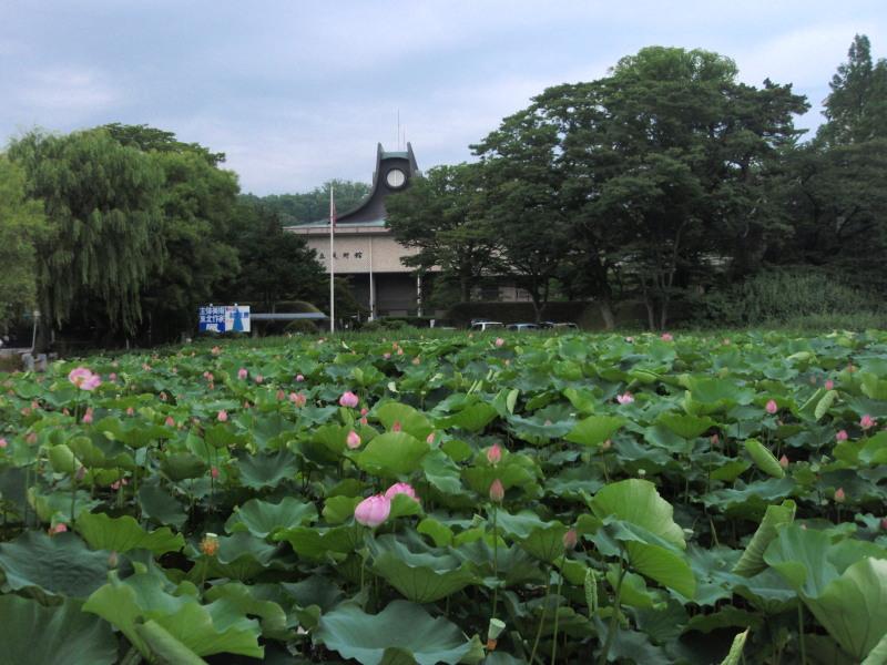 P1010559_01 千秋公園の堀を前景にした平野政吉美術館(7月)