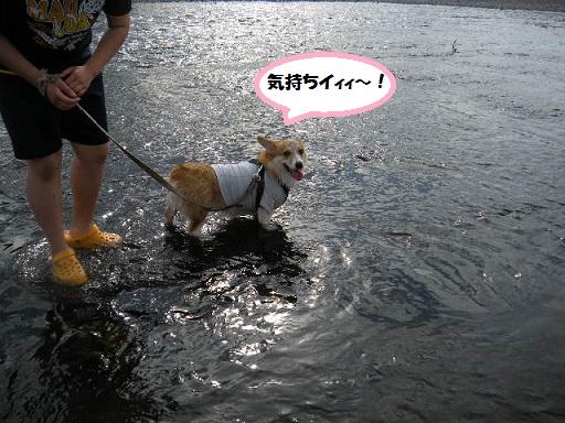 ryou120716-1.jpg