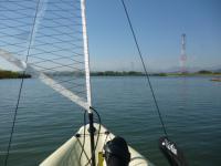 やっぱり退屈で大味な長良川