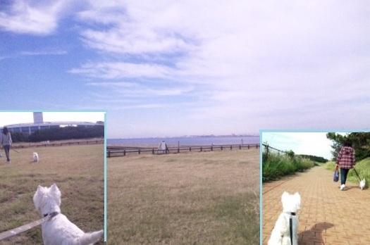 2012-10-13-0.jpg