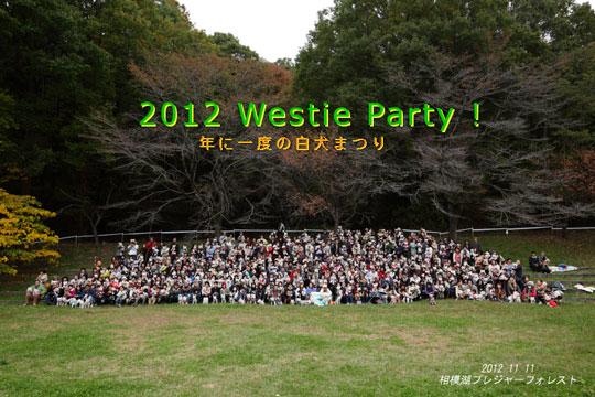 201211-11-1.jpg