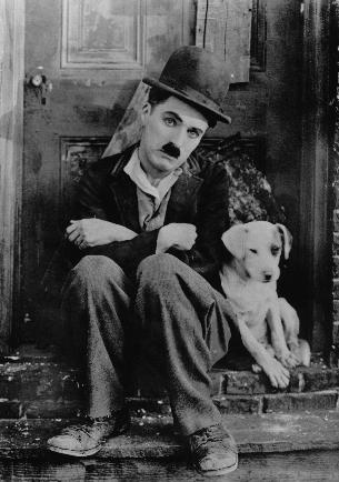 犬とチャーリー