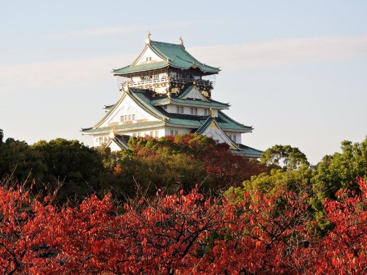 大阪城4513 (720x540)