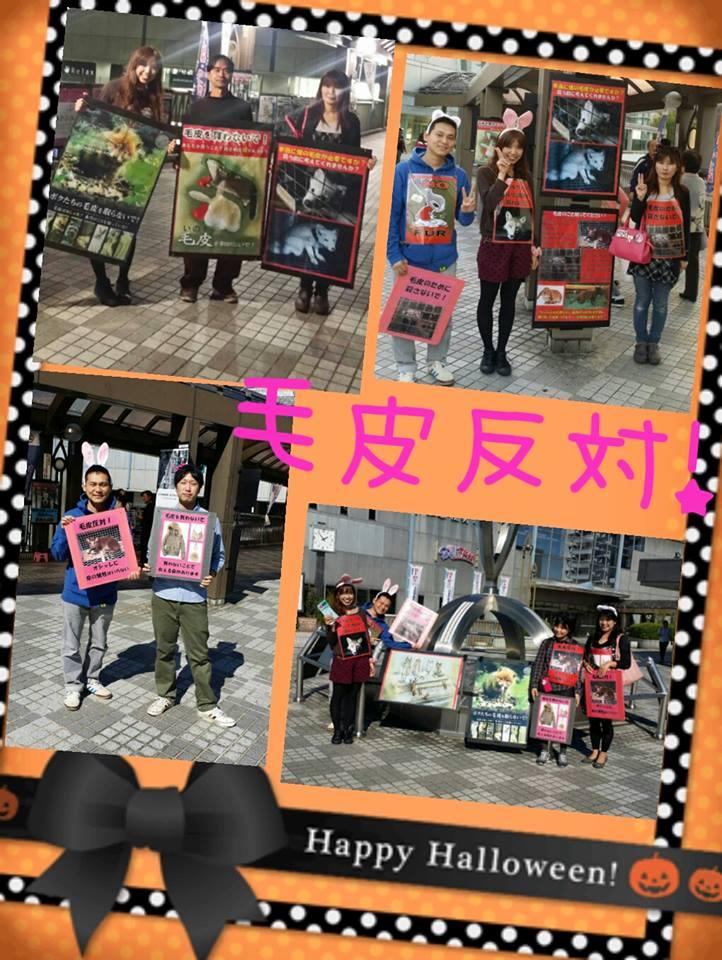 kawanishinofur2014.jpg