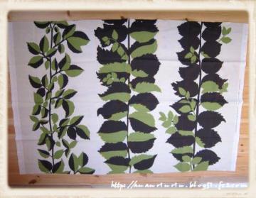 生茂った植物1