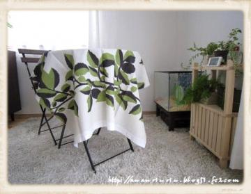 生茂った植物2