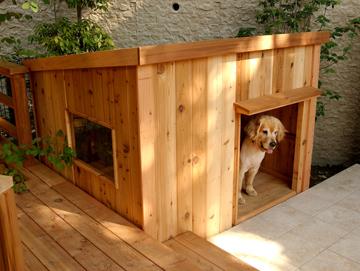 doghouse-a.jpg