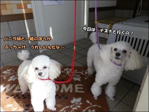 3110_20121010202908.jpg