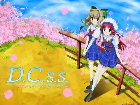 dcss11