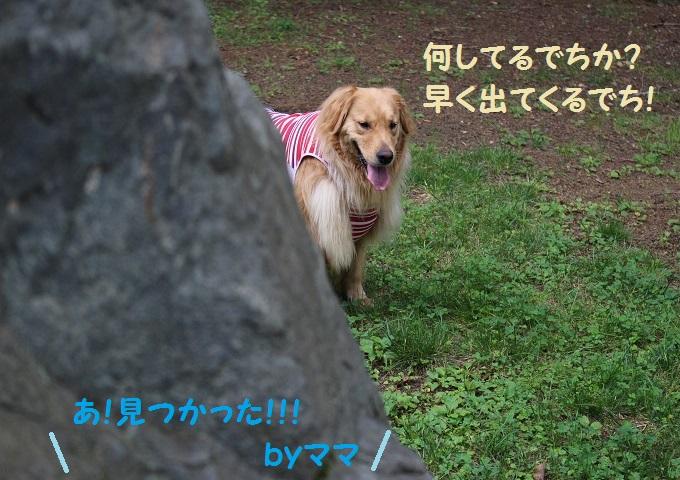 IMG_2845.jpg