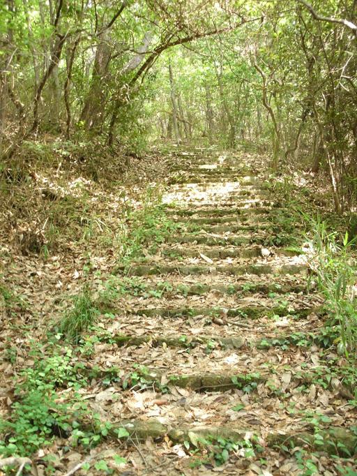 平井山本陣跡への道