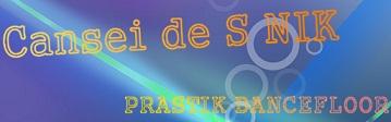 Cnsei de S NIK-banner