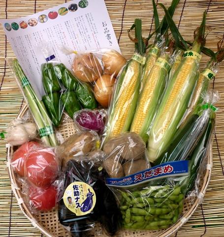 夏野菜セット_R