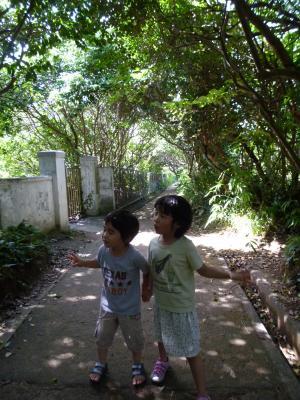 200706tj.jpg