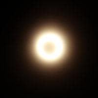 ボケボケ金環