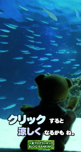 水族館バナー1A