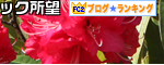 シャクナゲ FC2ブログランキングバナー3 120409
