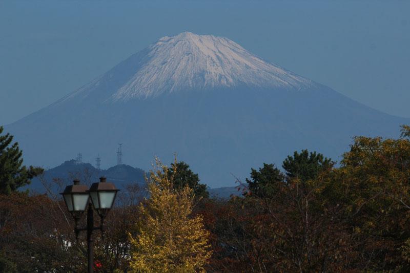 富士見芝生広場からの富士山 121104