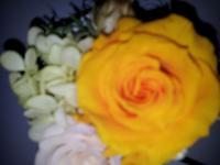 b_convert_20120926093249.jpg