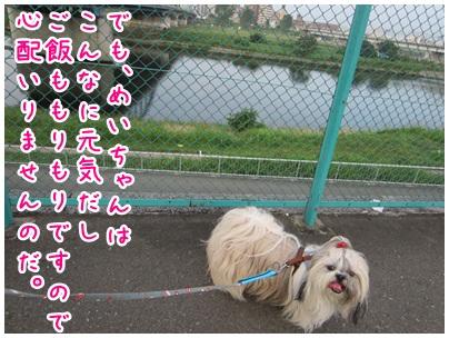 2012-07-28-03.jpg