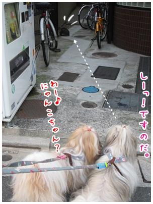 2012-07-29-05.jpg