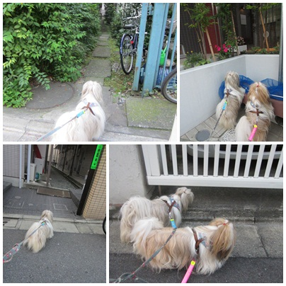 2012-07-30-07.jpg
