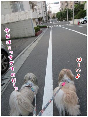 2012-08-01-01.jpg