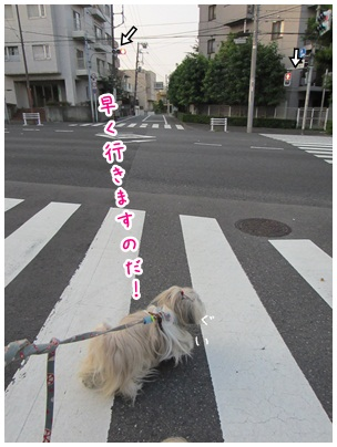 2012-08-01-02.jpg