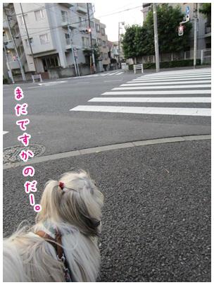 2012-08-01-03.jpg