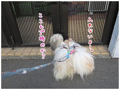 2012-08-01-07.jpg