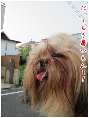 2012-08-01-09.jpg