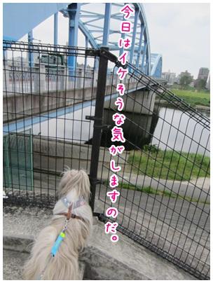2012-08-08-01.jpg
