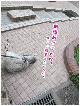 2012-08-08-11.jpg