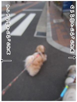 2012-08-10-03.jpg