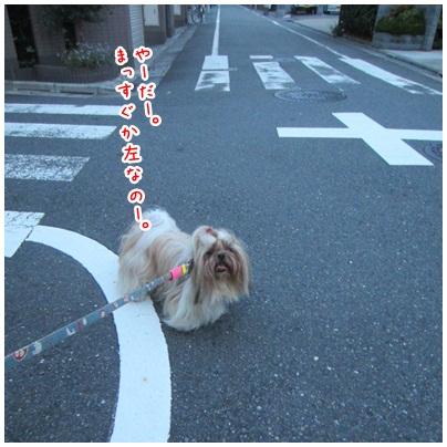 2012-08-12-04.jpg