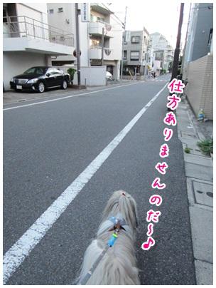 2012-08-16-08.jpg