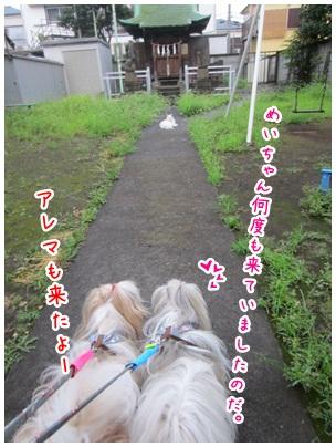 2012-08-20-03.jpg