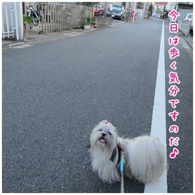 2012-08-21-01.jpg