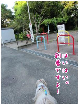 2012-08-21-04.jpg