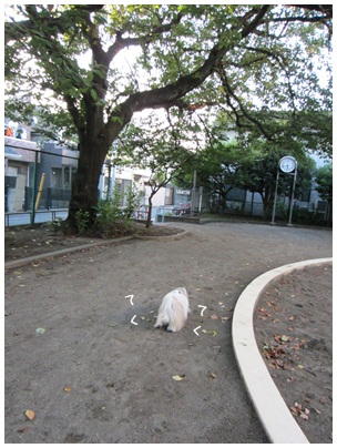 2012-08-22-01.jpg
