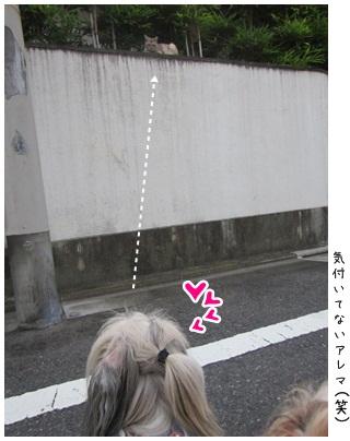 2012-08-30-04.jpg